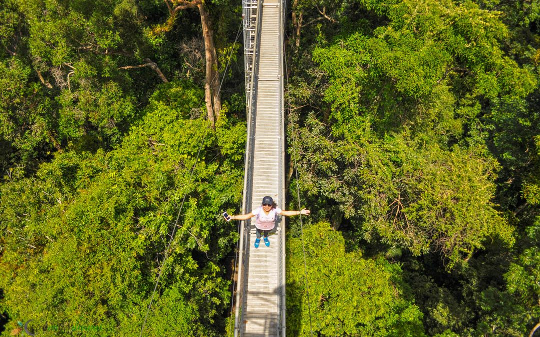 An Ulu Temburong National Park Day Tour Experience