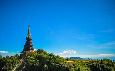Chiang Mai Holiday Trip Day 2: Doi Inthanon National Park & Cherry Blossoms